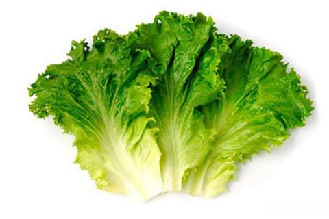 Лист салата вес